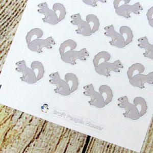Squirrel Hand drawn